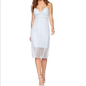 NWT | Bardot | Light Blue Circle Lace Dress